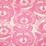 Rocky Raccoon in Pink