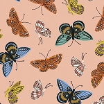 Monarch in Peach | Cotton Lawn