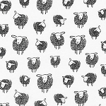 Wooley Sheep in Black