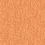 Scallion Texture in Orange