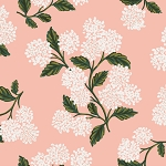 Hydrangea in Blush | Cotton Lawn