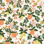 Citrus Floral in Cream