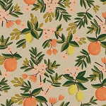 Citrus Floral in Sand | Canvas