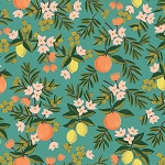 Citrus Floral in Teal