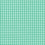 Carolina Gingham 1/8 Inch in Seafoam