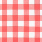 Carolina Gingham 1 Inch in Coral