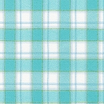Plaid in Aqua | Flannel