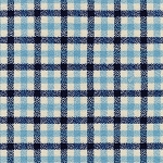 Tri-Tone Gingham in Waterfall | Flannel