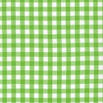 Carolina Gingham in Lime