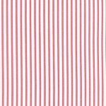 Petite Stripe in Blush