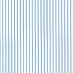 Petite Stripe in Blue