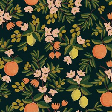 Citrus Floral in Black | Canvas