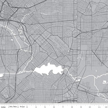 Map in Gray