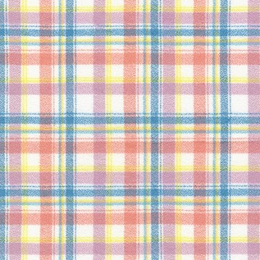 Plaid in Rainbow | Flannel