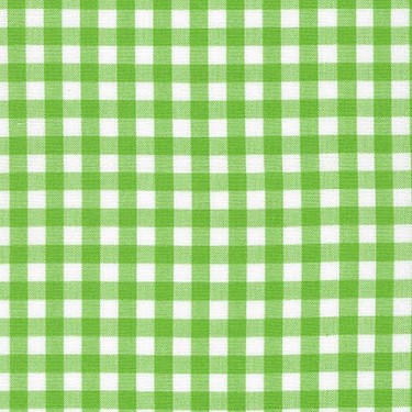 Carolina Gingham 1/4 Inch in Lime